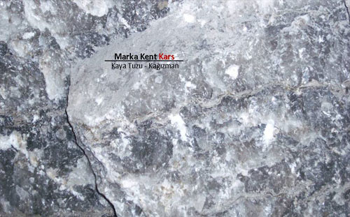 Marka Kent Kars 13