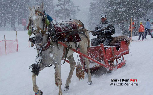 Marka Kent Kars 1 12
