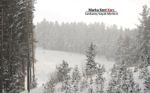 Marka Kent Kars 3 12
