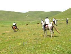 Selim'de Atlı Cirit Heyecanı