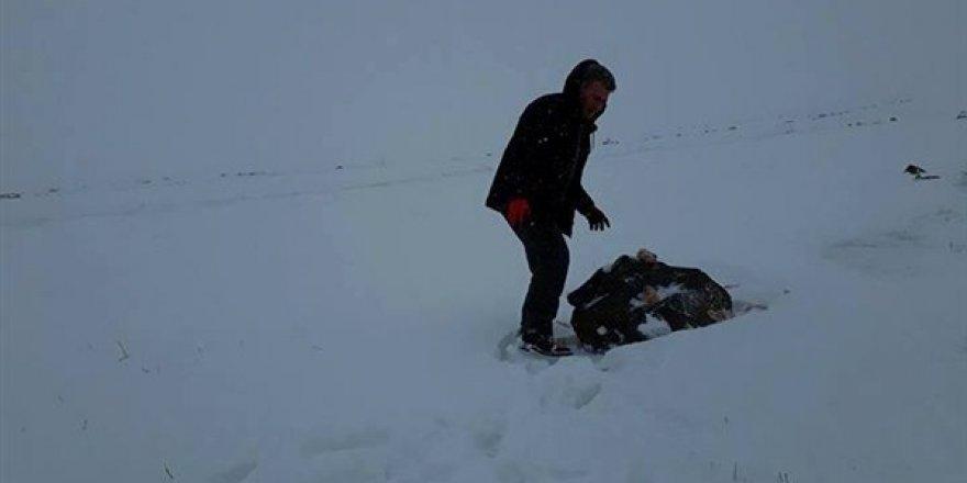 Yahni Dağı'nda yabani hayvanlara yem bırakıldı
