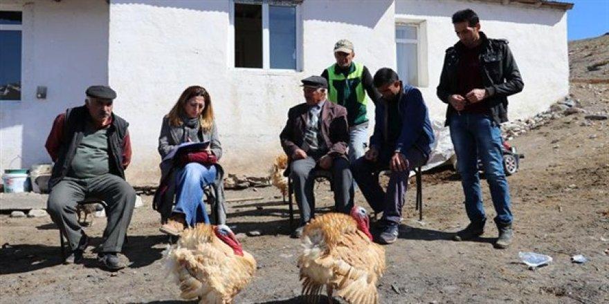 Tarımsal işletme ziyaretleri devam ediyor
