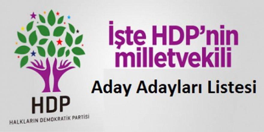 HDP Kars Milletvekili Aday Adayları