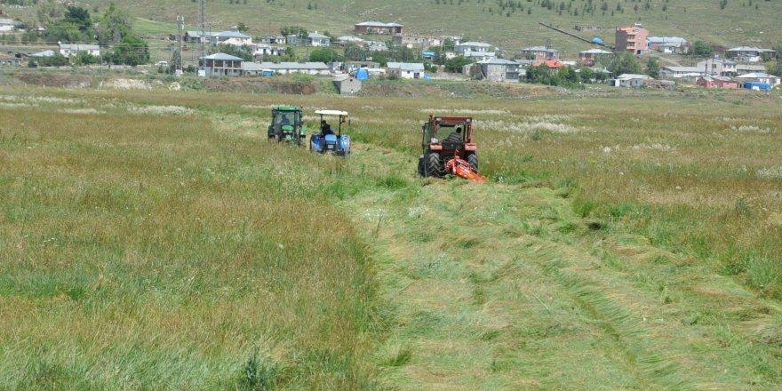 Kars'ta çiftçilerin ot biçme mesaisi başladı