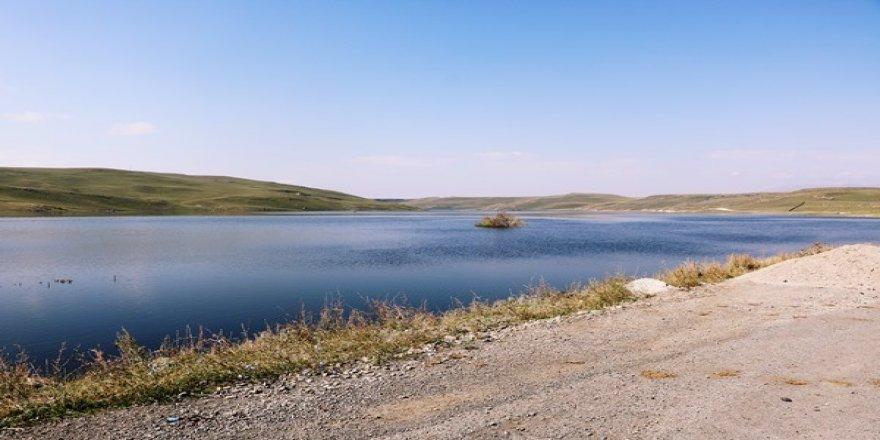 Kars Barajında, görsel güzellik herkesi hayran bırakıyor