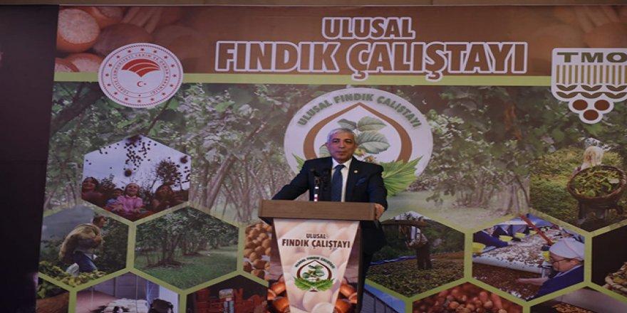 Yunus Kılıç, Ulusal Fındık Çalıştayı'na katıldı
