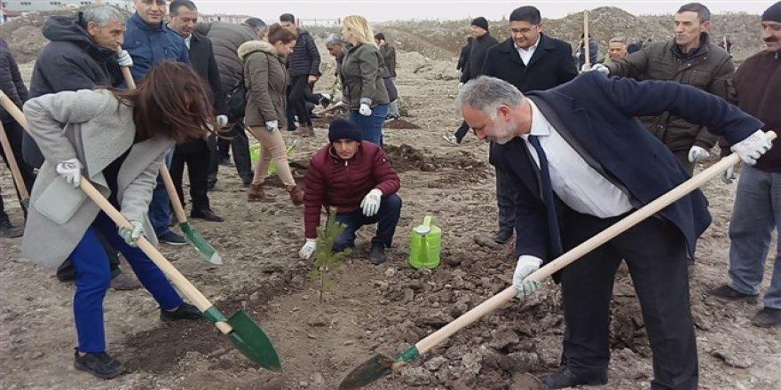 Kars Belediyesi fidanları toprakla buluşturdu