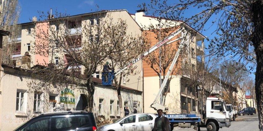Kars'ta belediye ağaçları buduyor