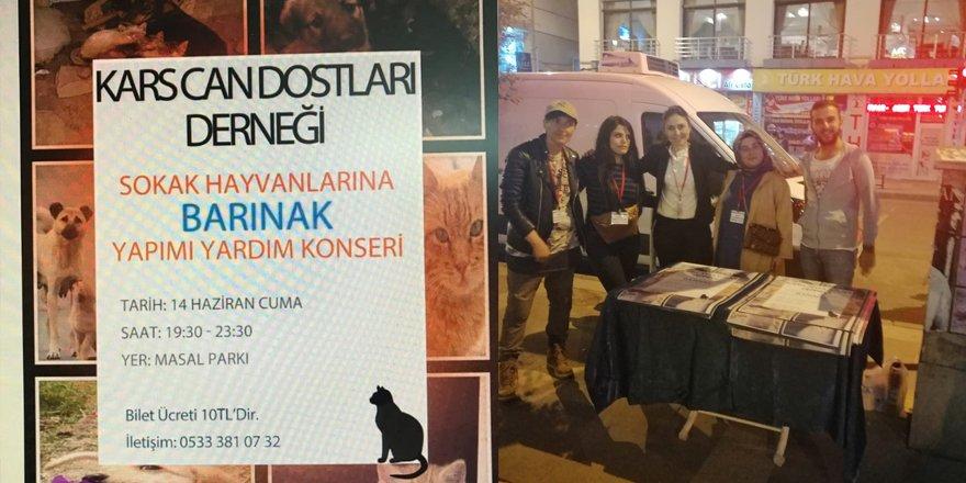 Kars'ta sokak hayvanları için konser