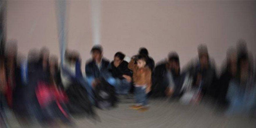 Sarıkamış'ta 9 kaçak göçmen yakalandı