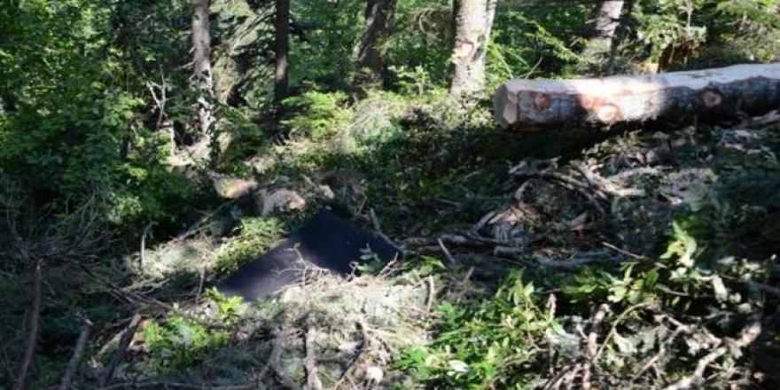 Kestiği ağacın altında kalan işçi vefat etti