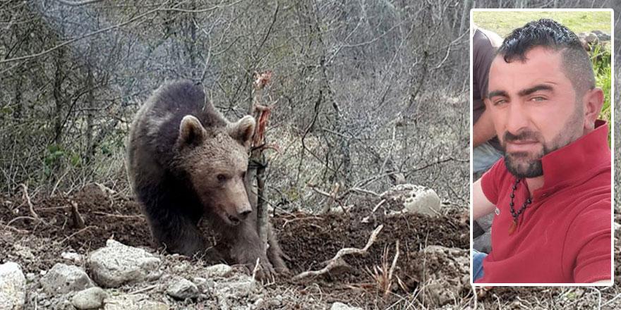 Kars'ta ayı saldırısı: 1 yaralı!