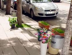 """Çiçekçiden """"Çiçek"""" Gibi Davranış"""