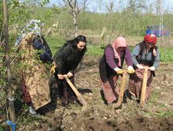 Kadın Çiftçiler Yarışacak