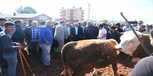 Bakan Arslan, Hayvan Pazarını İnceledi