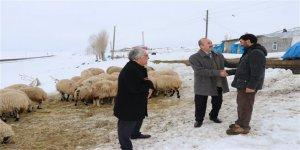 Kars'ta Genç Çiftçi projesi meyvelerini veriyor