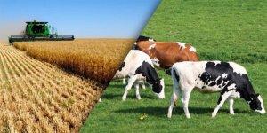 Kars'ın birinci önceliği tarım ve hayvancılık