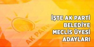 AK Parti Kars Belediye Meclis ve İl Genel Meclis Üyesi Adayları Açıklandı