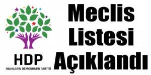 HDP Kars Belediye Meclis Üyesi Adayları