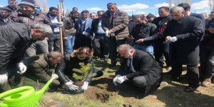 Kars Belediyesi mezarlıkları ağaçlandırıyor