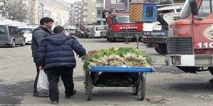 Nahçıvan yeşilliği Kars'ta piyasaya çıktı