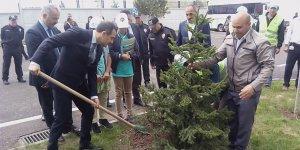 Kars Emniyet Müdürlüğü bahçesi ağaçlandırıldı