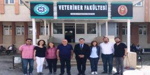 Kafkas Üniversitesi Ardahan'daki Sokak köpeklerini kısırlaştırılacak