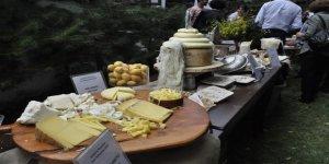 Anadolu peynirleri Kars'ta buluşuyor