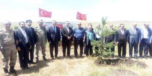 Kars'ta 15 Temmuz şehitleri için fidan dikildi