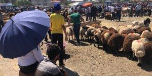 Hayvan pazarında bayram yoğunluğu