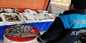 Kars'ta, su ürünleri denetimi yapıldı