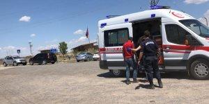 Kars'ta hayvan otlatma kavgası: 2 yaralı