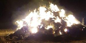 Kars'ta ot yangını!