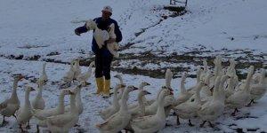 Kars kazı ile başladı, çiftlik sahibi oldu!
