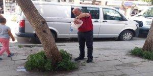 Kars'ın ağaç sulayan adamı : Hasan Sinik