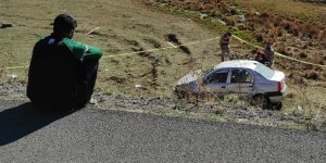 Köpeğe çarpmak istemeyen sürücü kaza yaptı